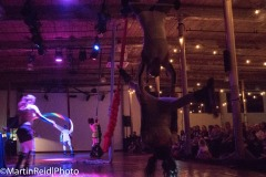 circus-06883