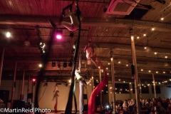 circus-06895